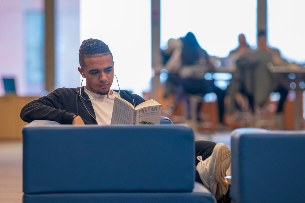 A student reading a book at the Homer Babbidge Library